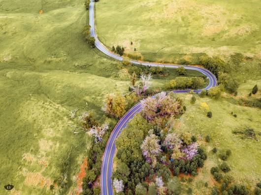 Haleakala Hwy