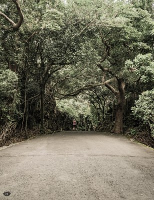Kenting National Forest Recreation Area